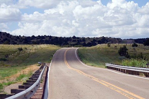 road newmexico clouds sunflowers summertime guardrail sundaydrive nm41