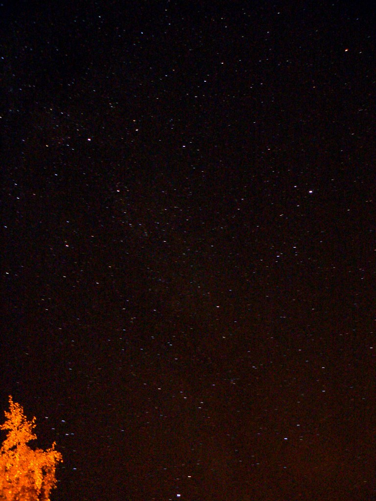 Cygnus area