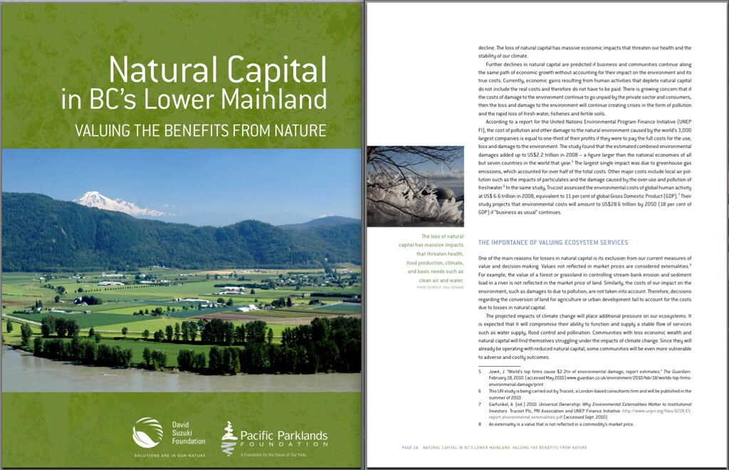 "My ""Branchcicles"" photo on page 14 of the David Suzuki Foundation's report: Natural Capital in BC's Lower Mainland by Paul Henman"