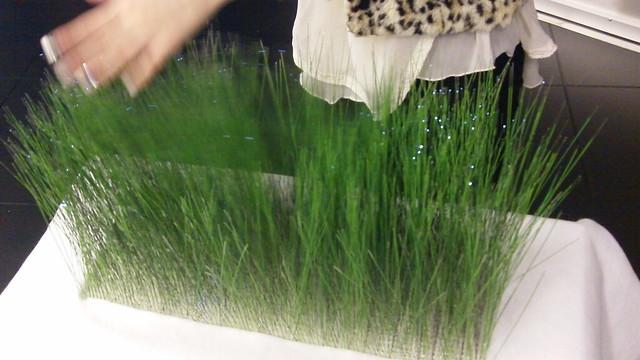 Grass_Interaction
