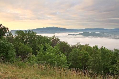 lake mountains fog sunrise tennessee nationalforest cherokee cherokeenationalforest chilhoweemountain anawesomeshot onlythebestare ocoeelake