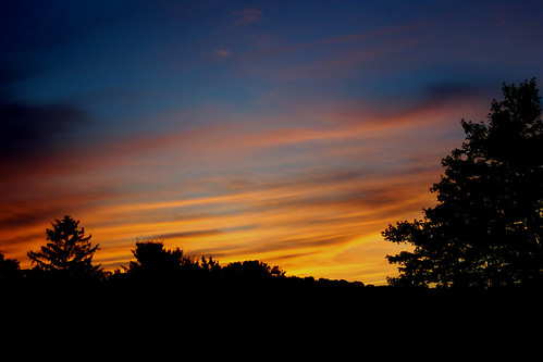 blue trees light sunset shadow sky orange black color tree nature clouds contrast dark landscape outdoors gold sundown pennsylvania country sillouette perry