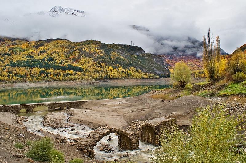 Búbal otoñal / Autumnal Bubal