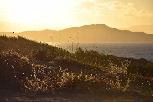 sunset landscape view plants sunlight sunlit sunny summer warm hot sea water mediterranean hills island sky clouds gold golden light layers air weather chania hania xania canea crete kreta kriti greece greek