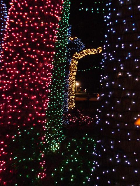 Rhema Christmas Lights.Rhema Christmas Lights Daniel Jeffries Flickr