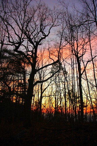 sunset usa nature outdoors knoxville tennessee hike housemountain