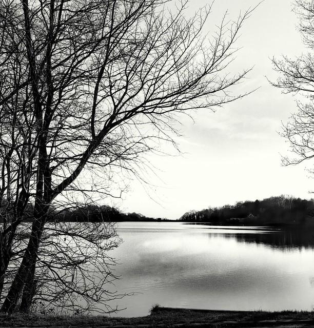 Jumbles Reservoir view(Rollei)