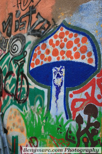 Magic mushroom | by Marc Ben Fatma - visit sophia.lu and like my FB pa