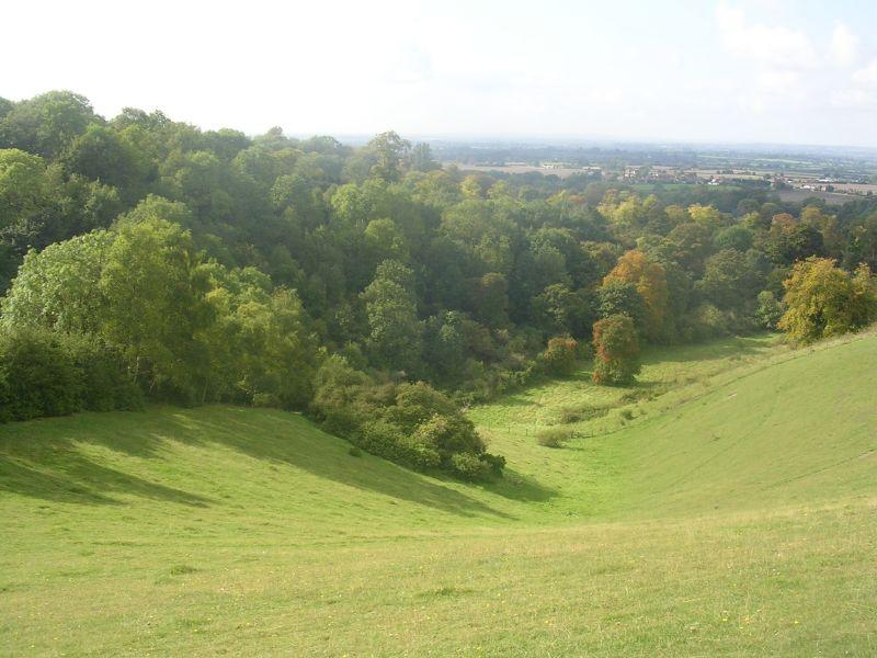 View down Near Ellesborough, Wendover Circular.