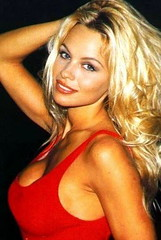 Pamela Anderson, 1993