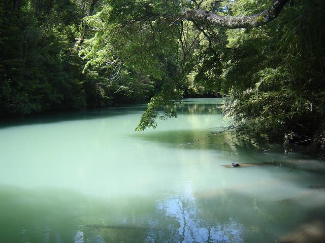 Bariloche - Río Frías