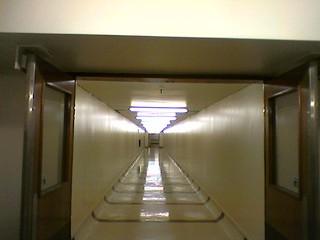 Wellington Hospital link tunnel