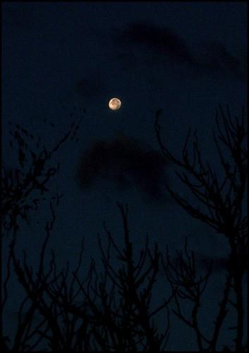moon film night analog 35mm dark asahi kodak cropped enlarged happyhalloween mesuper postprocessing gold400 soligorf35452880mmzoommacrolens moodyspooky pentaxart cloudspentax