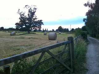 Fields by Buscot Lock | by Tip Tours