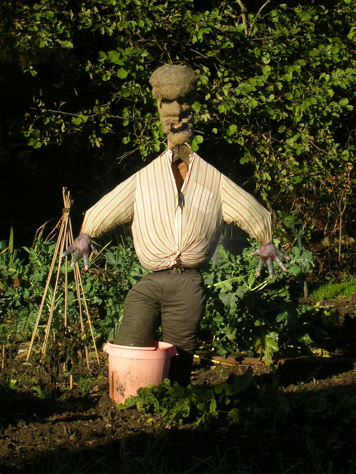 Mr Nasty Scarecrow near Rodmell. (Still scares me, never mind the crows).