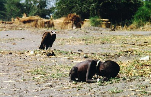 A vulture watches a starving child [1993]