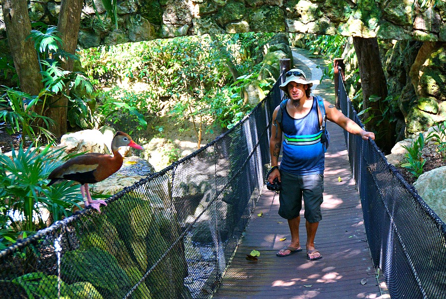 Xcaret Ariary and Swinging Bridge