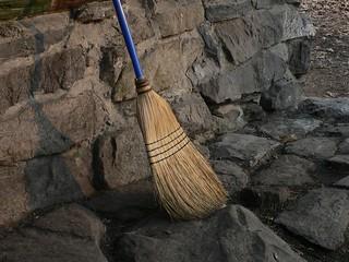 Broom | by 1024greenstreet