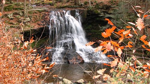 autumn mountain fall leaves forest waterfall rocks stream pennsylvania waterfalls worldsendstatepark dryrunfalls