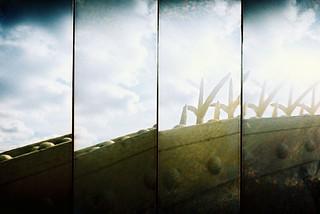 spikes | by knautia