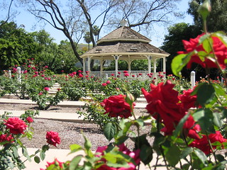Rose Garden, Cal Poly Pomona   The rose garden at the Califo ... on chapman parking map, santa ana college parking map, pomona campus map, troy university parking map, columbus state parking map, montana state university parking map, azusa pacific university parking map, cal poly slo logo, mt sac parking map, university of colorado boulder parking map, university of colorado denver parking map, davis parking map, csu chico parking map, calpoly pomona map, michigan parking map, university of south carolina parking map, truman state university parking map, university of northern colorado parking map, caltech parking map, san diego state university parking map,
