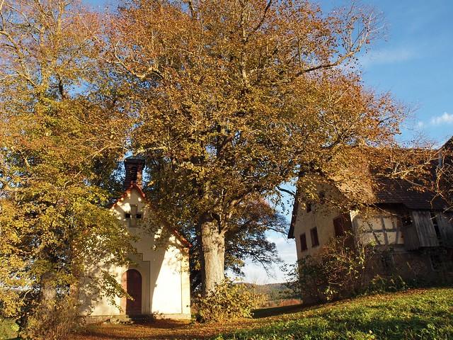Mariahochheim