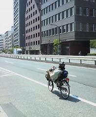 laid-back biker