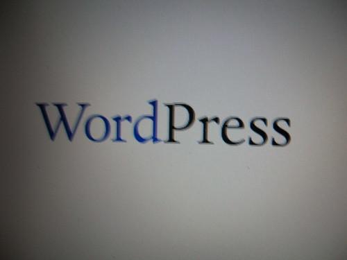 Word Press   by r0bz