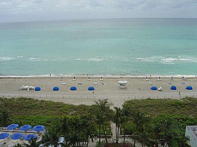 Wyndham Hotel Miami Beach