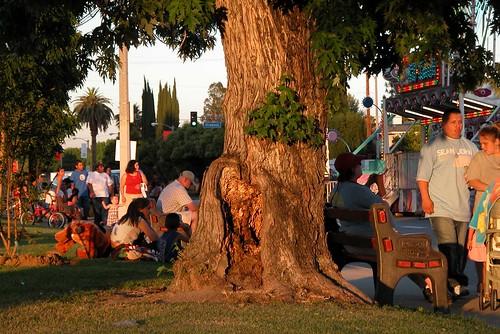 Butterfly Festival '05 pix