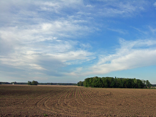 Mulliken Sky   by joeldinda