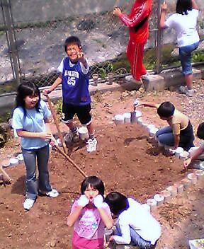 garden work hoi-hoi!