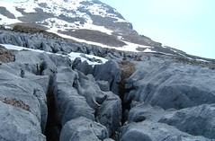 Limestone - 48