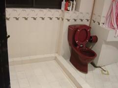 Toilet View1
