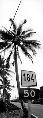 〈縣道184〉引領聽者走入交工樂隊動人的音樂旅程
