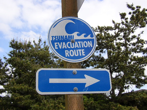 Tsunami evacuation sign | by epugachev