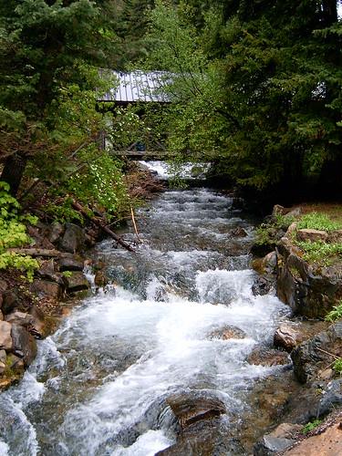 Aspen Grove River