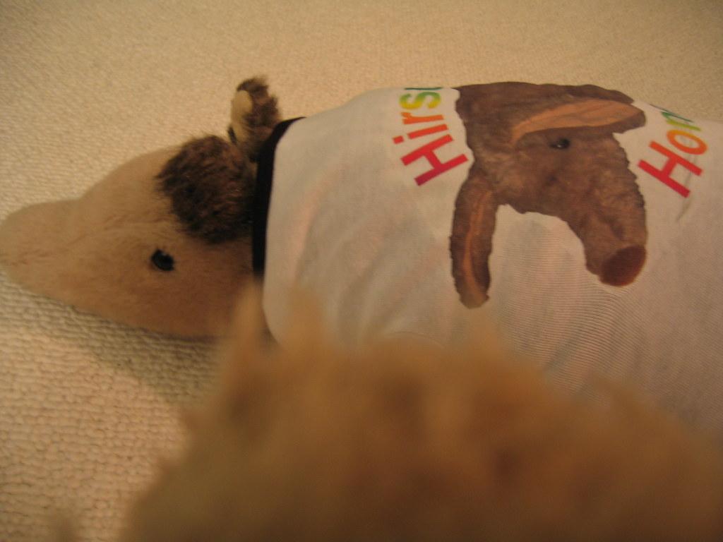 Aardvark Photography 2 (Amelia and my shirt)