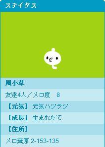 Blog Pet