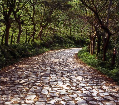 Road to Yohualichan.