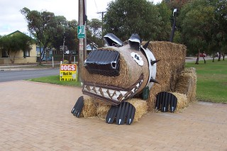 Hay bale art - dog | by Jaycee1