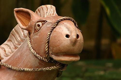 Cavalo de barro / Clay horse   by Marcio Cabral de Moura