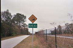 Hill Ahead (Suncoast Trail-HCR 476)