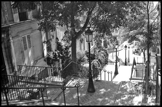 THE STAIRS OF MONTMARTRE