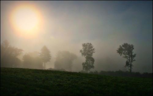 fog sunrise newengland august 2007 naturesfinest