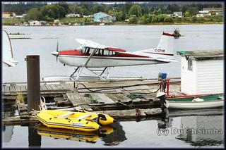 Cessna A185E Skywagon 185 C-GTNE_7542