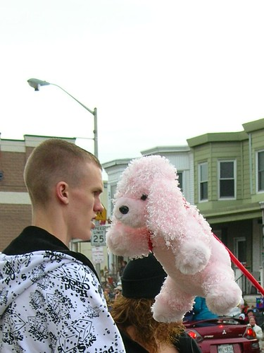 dice guy vs. poodle on a stick