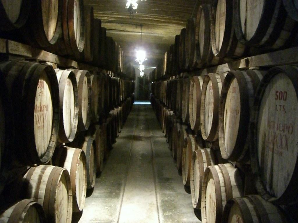 El viñedo más antiguo de América.