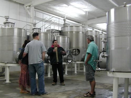 Wine Making in Baja