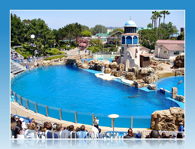 Dolphin Show Arena at Sea World in San Diego, California
